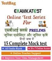 sbi clerical cadre junior associate online test