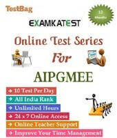 mock test for aipgmee