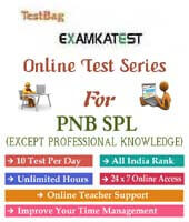pnb specialist officer online test papers