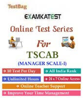 tscab manager scale 1